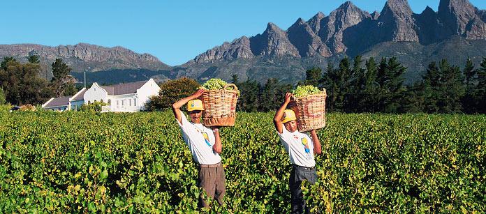 Drömresa – Sydafrika
